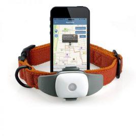 Apello Prémium GPS nyomkövető kutya macska részére