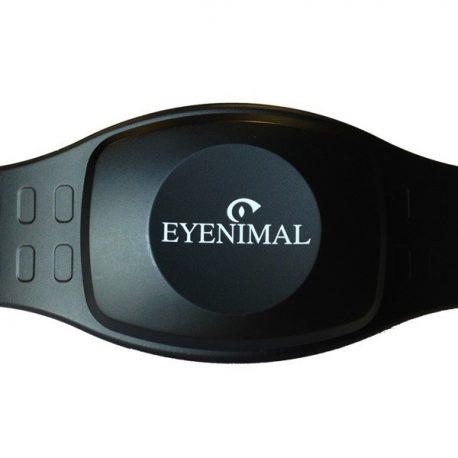 eyenimal_ol_3