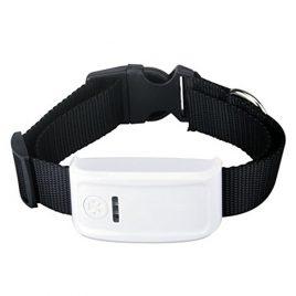 TK909 nyomkövető GPS nyakörv kutya vagy egyéb állat részére